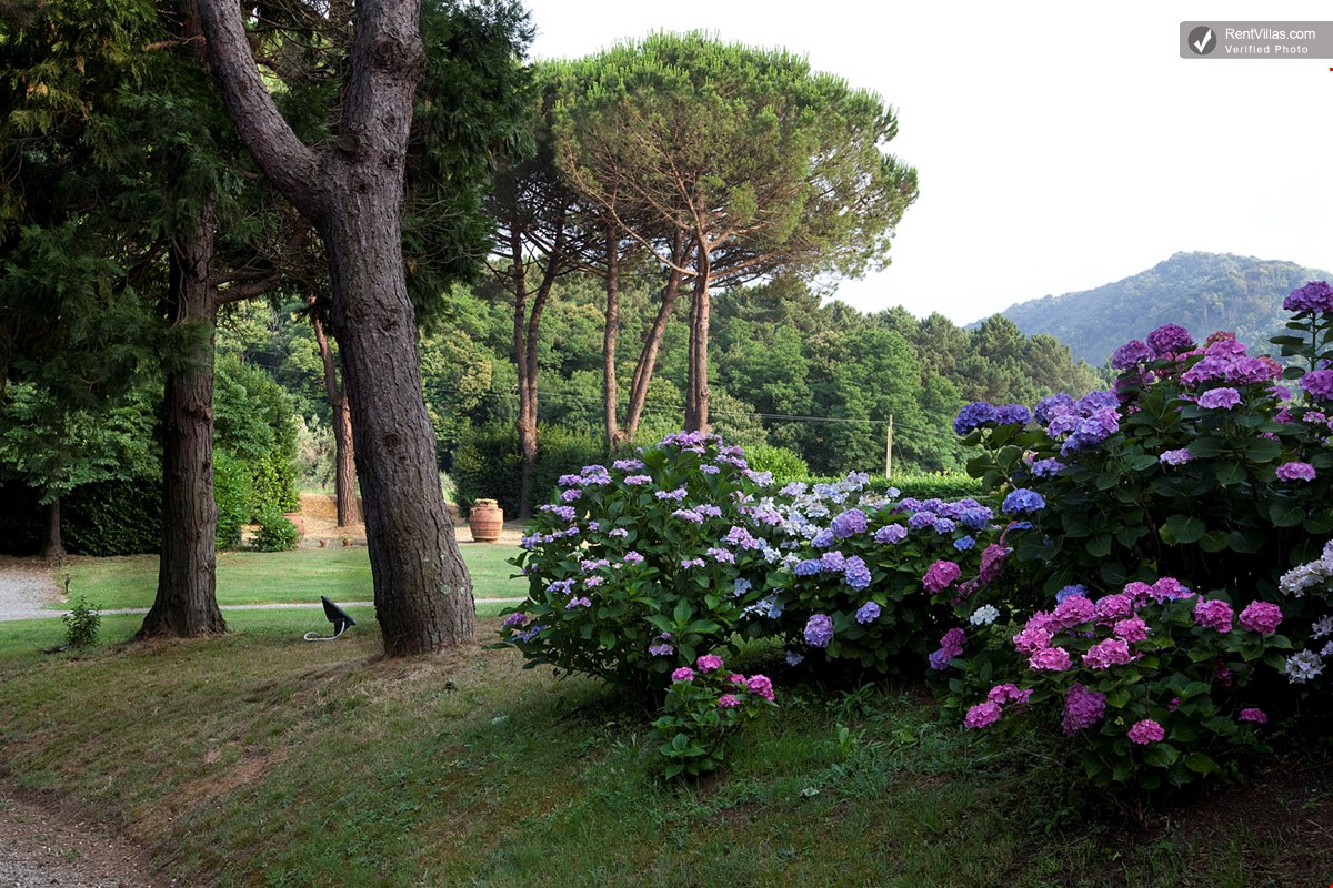 Photos Of Beautiful Villa Near Lucca With Pool And Chef