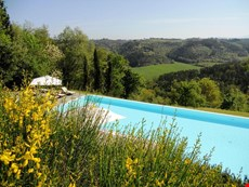 Photo 2 of Reviews of Apartment Rental in Tuscany, San Casciano in Val di Pesa (Chianti Area)