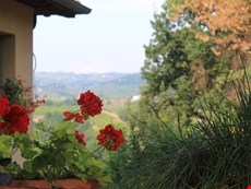 Photo 2 of Villa in Tuscany Near Certaldo and the Chianti Region