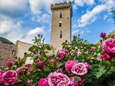 Photo 1 of Reviews of Historic Fortress with Pool for a Group in Umbria